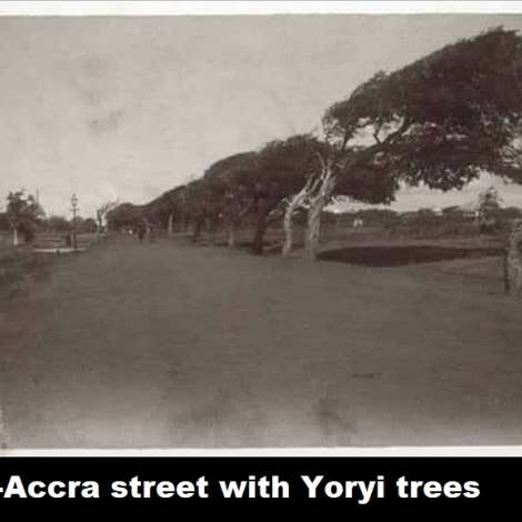 Osu-Accra street with Yoryi Tress