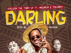 Darling - Sheldon The Turn Up ft Magnom & Tulenkey