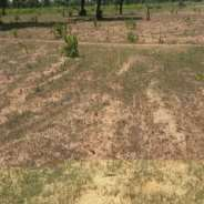 Plots of land for sale at Afienya.
