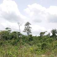 6 REGISTERED PLOTS ON TOP OF MOUNTAIN IN ABURI