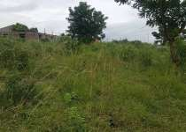 50 acres of land for sale each plot is 70,000cedis
