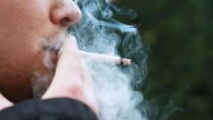 Most smokers are often not aware of how tobacco is cultivated