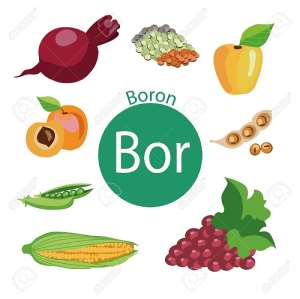 Boron and Prostate Health: The Mounting Evidence!