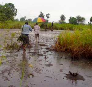 Environmental damage in the Niger Delta. 