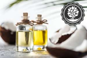 Coconut: The Tree of Life, Oil—More Effective Than Permethrin for Head Lice