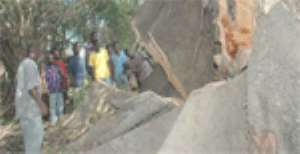 Highways Coughs ¢90m For Tree