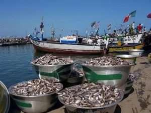 May 15 To June 15 Closed Season For Fishing