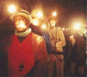 Redundant Miners urged to go into Agriculture