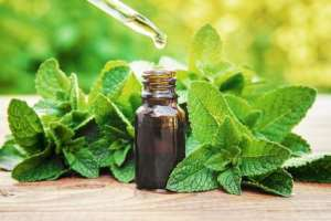 COVID-19: Ghana Herbalists Present Covid-19 'Cure' For Clinical Testing