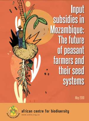 Input Subsidies In Mozambique: The Future Of Peasant Farmers And Their Seed Systems