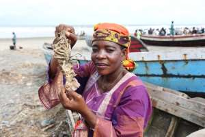 Investing in the blue economy to accelerate sustainable development in Africa