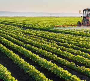 Harnessing Technology To Enhance Agricultural Productivity, Marketing And Fair Pricing