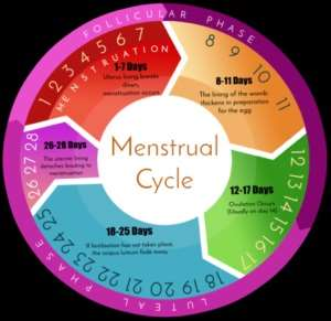 Affordable Menstrual Cycle Management