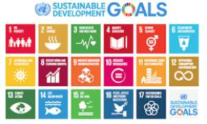 Global Meet Underlines Country-Level Progress On Sustainable Development