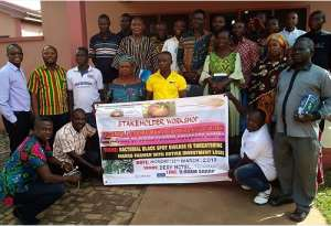 Mango Farmers In Techiman Pledges To Boost Economy With Lucrative Returns