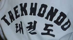Taekwondo open Championship ends