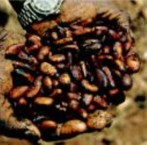 Produce Buying Company buys more cocoa