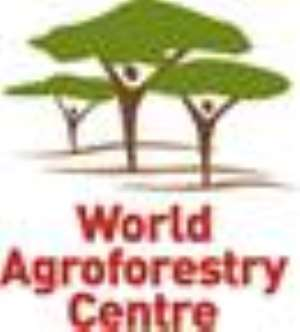 Agroforestry Can Be A Long-Term Solution To Food Shortage In Africa