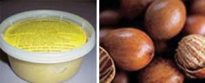 Shea butter made in Ghana (left), Shea nuts (right)