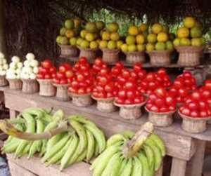 President Kufuor Salutes Ghanaian Farmers