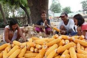 Understanding The Role Of Maize Market Queens In Ghana : CUTS Ghana Report