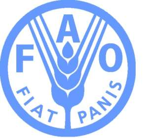 FAO ANNOUNCES FINANCIAL SUPPORT TO HELP SUDAN FIGHT LOCUST THREAT