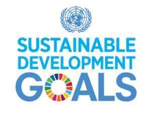 In Pursuit Of A New Global Agenda: Understanding the Sustainable Development Goals (SDGs)