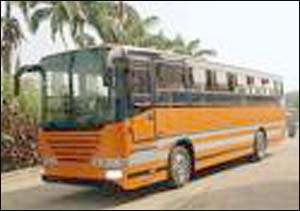 Sex On Kufuor Bus