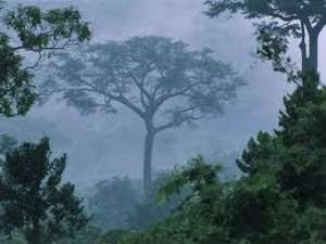 Ghanaian researchers develop strategies to conserve forest resources
