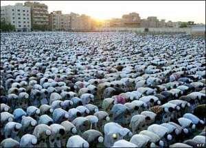 More Prospective Pilgrims Depart To Saudi Arabia