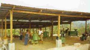 Three Design Palm Oil Processing Plants