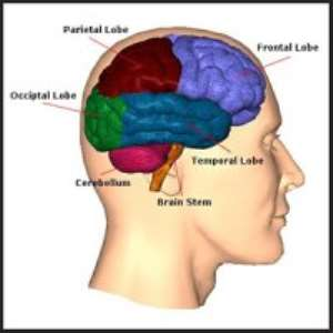 Tips To Manage Brain Tumour Patients