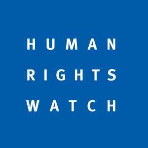 West Africa: Regional Boko Haram Offensive / Multinational Effort Should Protect Civilians, Respect Prisoner Rights