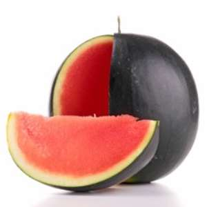 Watermelon And Melon Varieties From Green Seeds—American Hybrid Seeds