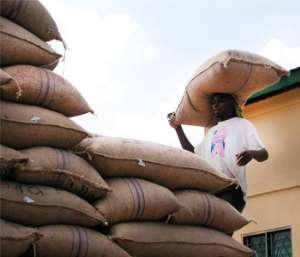 Kuapa Kokoo exceeds cocoa purchase target for current crop season