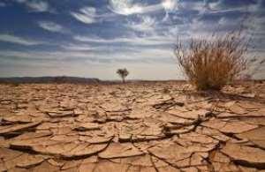 Women pastoralists feel the heat of climate change
