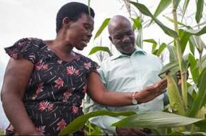 Develop Support Strategy For Small-Scale Farmers