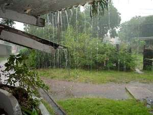 Rainfall Pix New