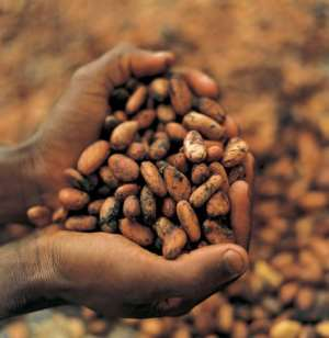 Cocoa Farmers In Ghana Keeps Getting Poorer Under The Government Of President Akufo Addo