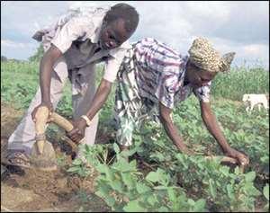 $25m Await Farmers