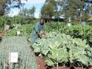 Open forum on Agricultural Biotechnology holds in Kumasi