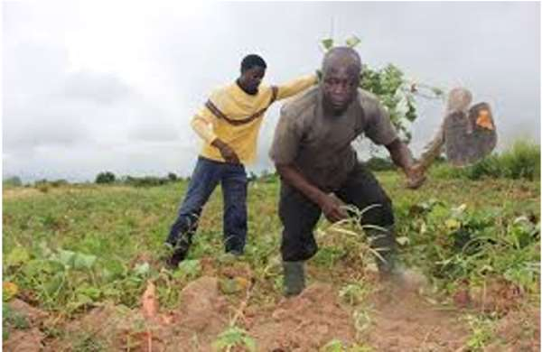 Limitations To Modernising Agricultural Growth In Ghana