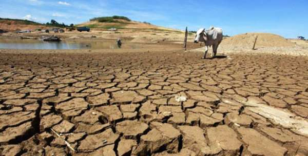 Gov't must create avenues to raise climate change awareness – CSOs on SDG13