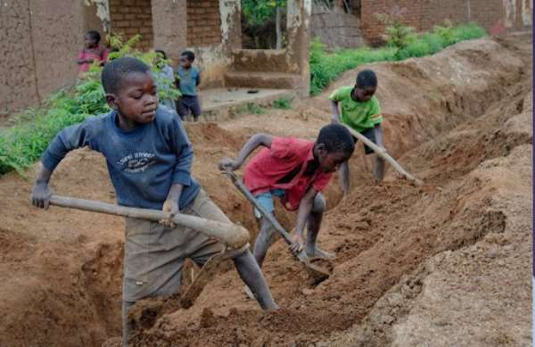 Child labour rising in Ghana and Ivory Coast's cocoa farms – Study finds