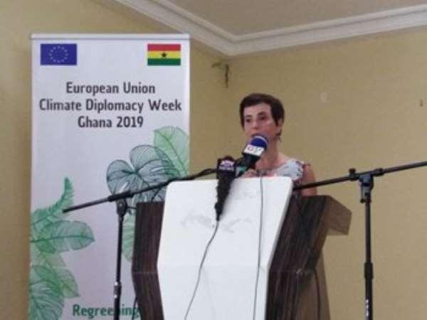 EU Cautions Ghana Over High Forest Degradation