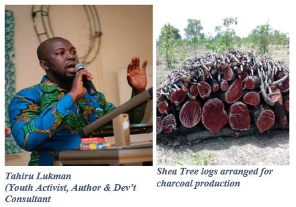 Upper West Region: Why Cut Shea Trees for Charcoal Production? Youth Activist Queries!