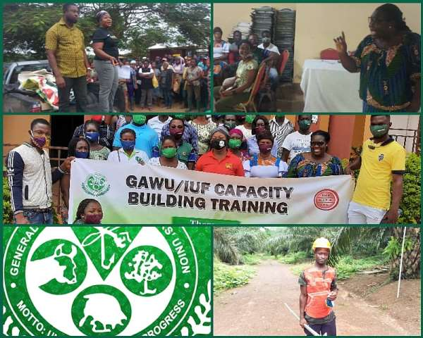 GAWU & Our 60years Of Promoting Decent Work In Agriculture