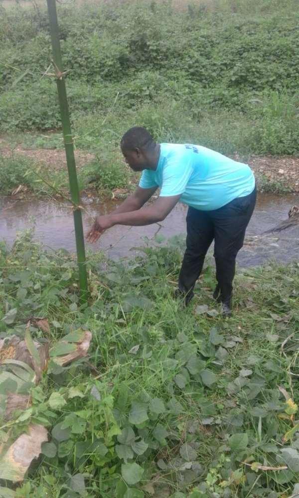 NGO Reclaims Degraded Land At Akyem Dokyi