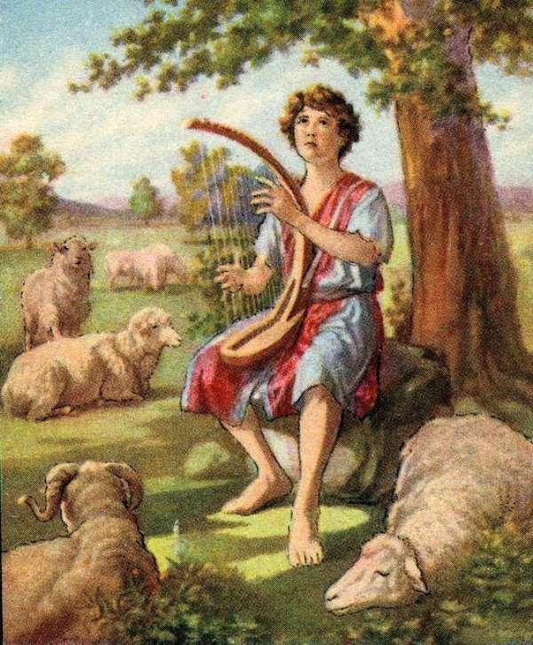 Poetry: The Church Needs To Shepherd Even The Hurt Sheep