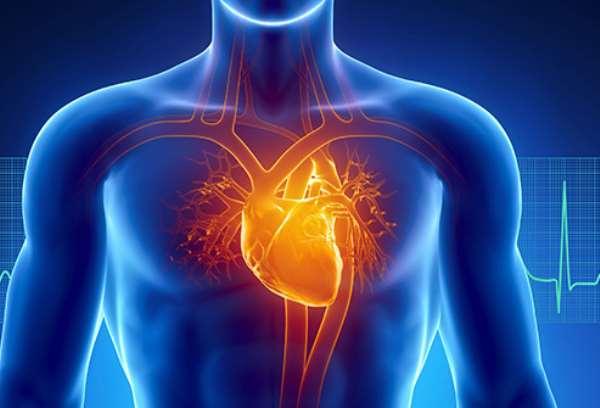 IDTechEx Report Discusses Diagnosing Cardiovascular Disease